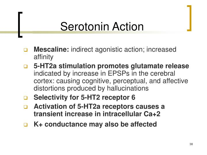 Serotonin Action