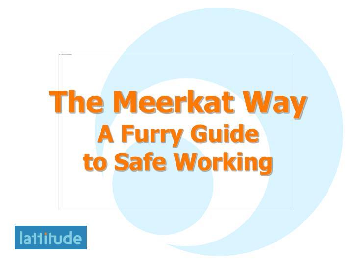 The Meerkat Way