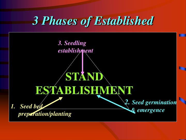 3 Phases of Established