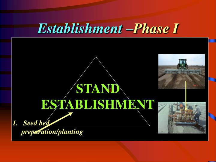 Establishment –