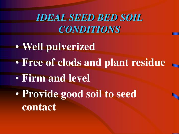 IDEAL SEED BED SOIL CONDITIONS