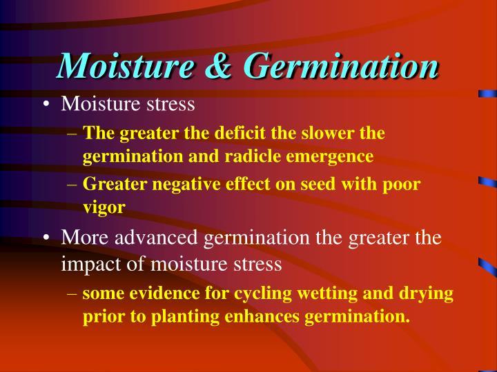 Moisture & Germination
