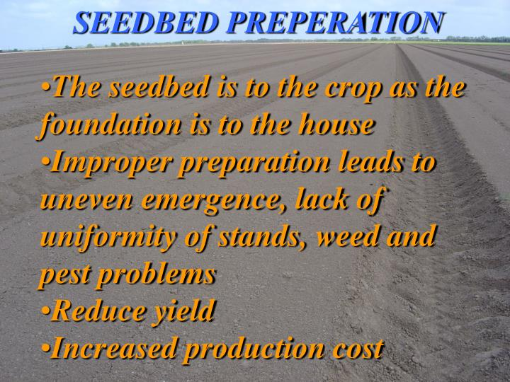 SEEDBED PREPERATION