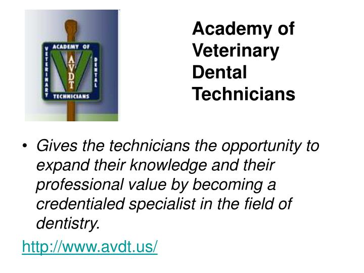 Academy of Veterinary Dental Technicians
