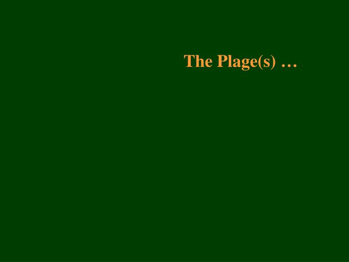 The Plage(s) …