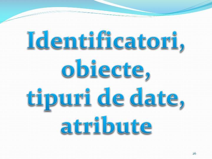 Identificatori, obiecte,