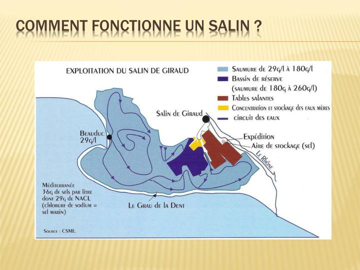 Comment fonctionne un salin ?