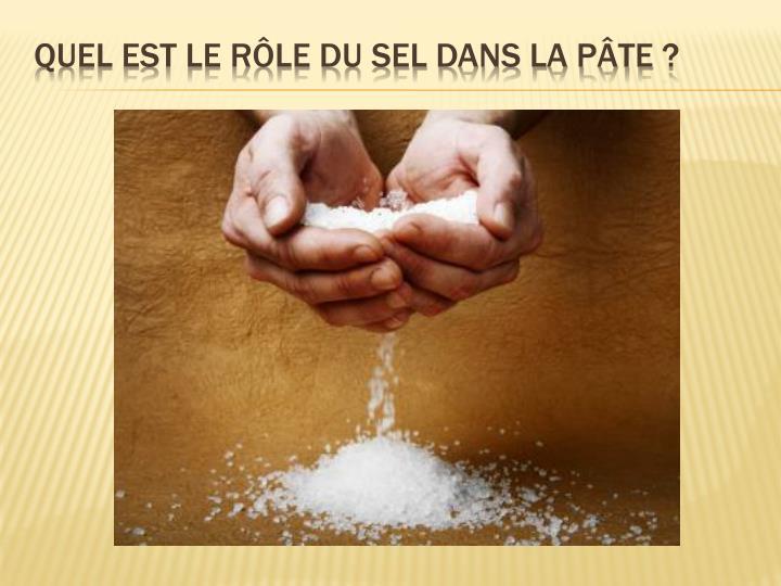 Quel est le rôle du sel dans la pâte?
