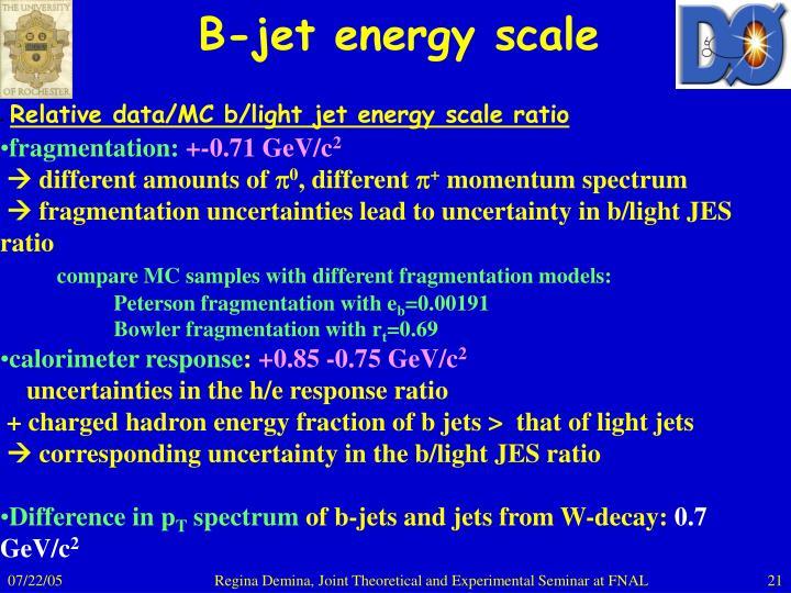 B-jet energy scale