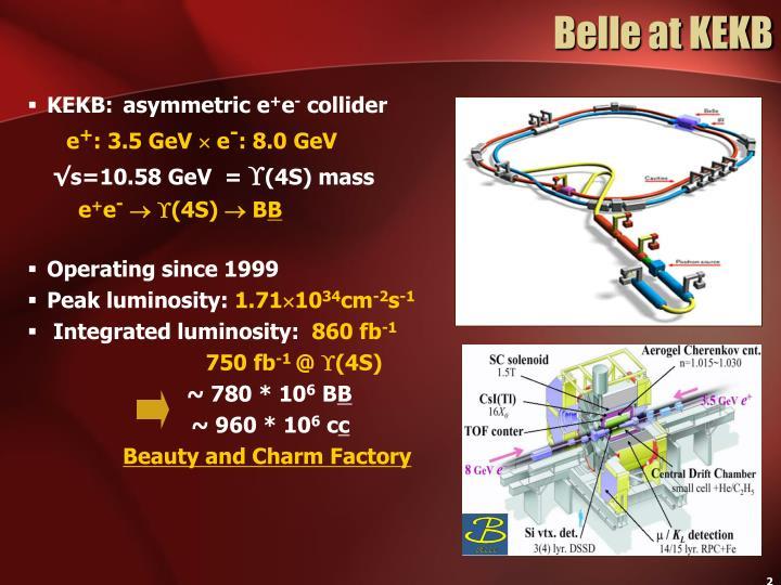 Belle at KEKB