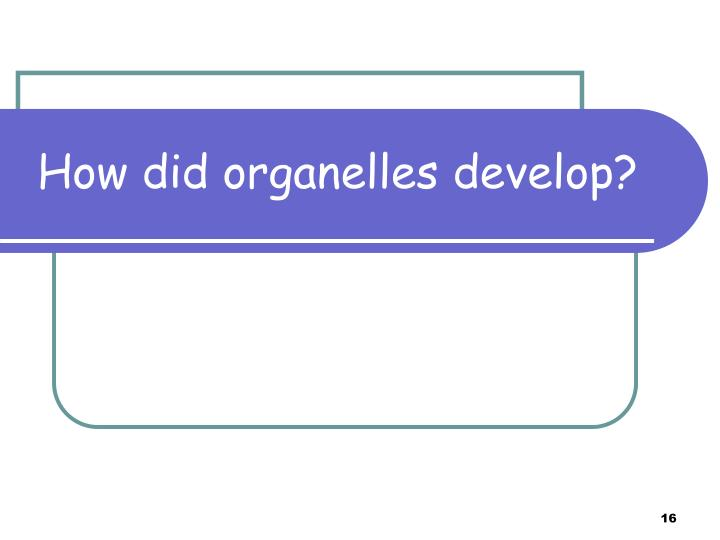 How did organelles develop?