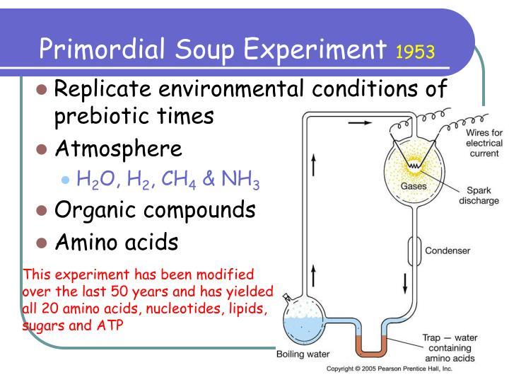 Primordial Soup Experiment