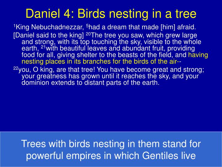 Daniel 4 birds nesting in a tree