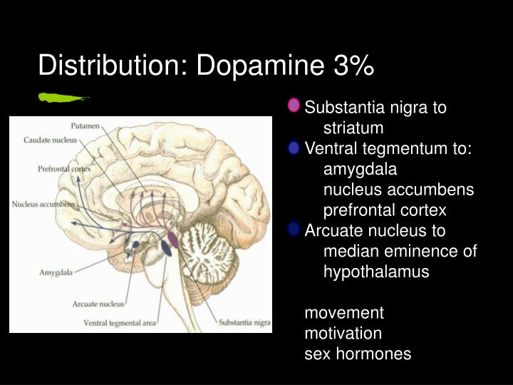 Distribution: Dopamine 3%