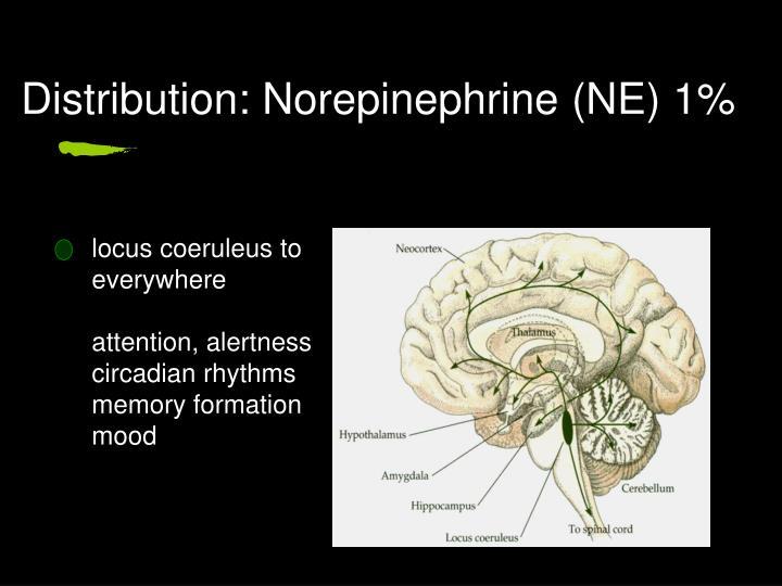 Distribution: Norepinephrine (NE) 1%
