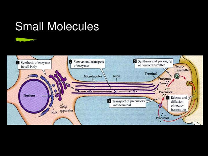 Small Molecules
