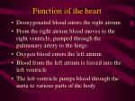 function of the heart