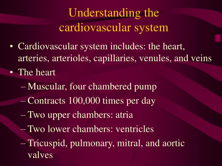 Understanding the cardiovascular system