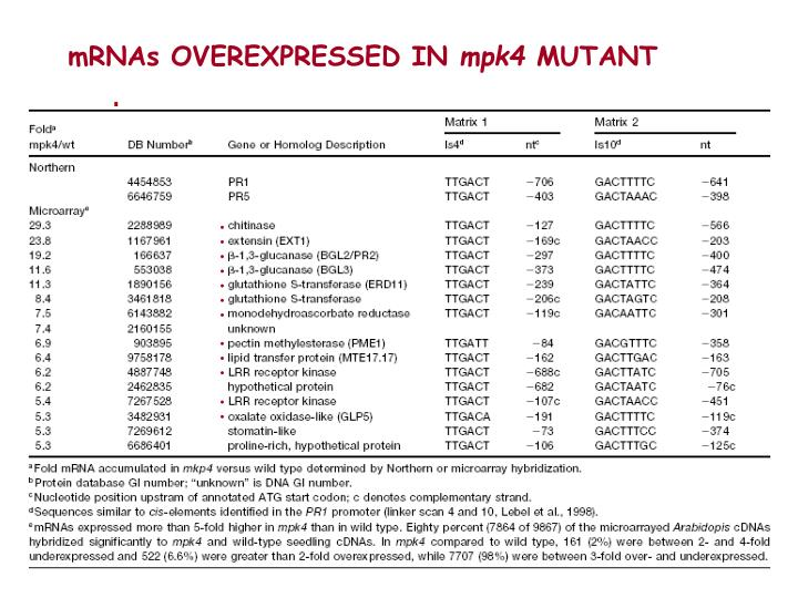 mRNAs OVEREXPRESSED IN