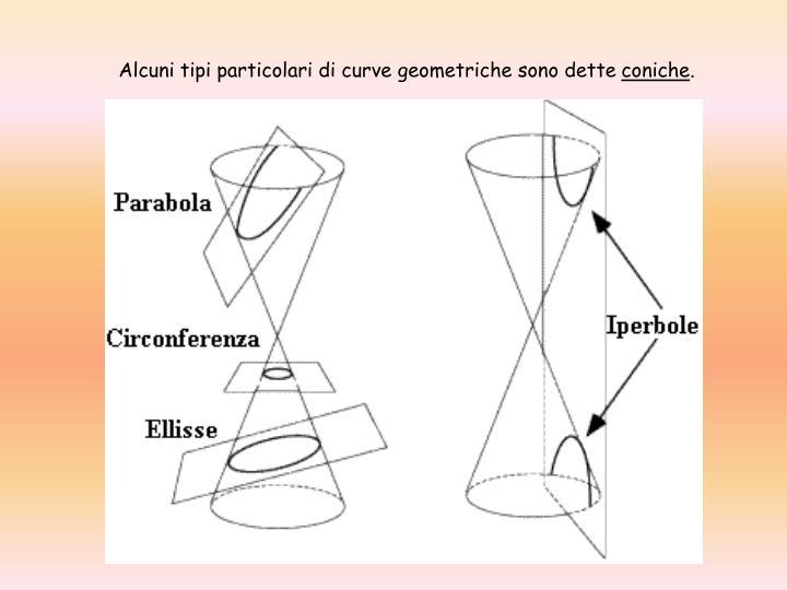 Alcuni tipi particolari di curve geometriche sono dette