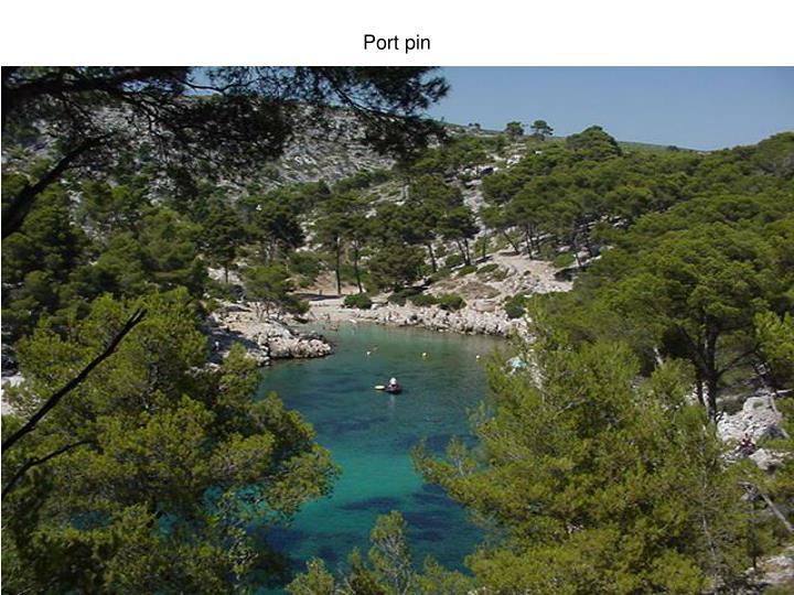 Port pin