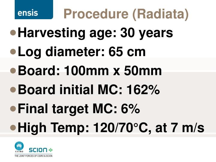Procedure (Radiata)