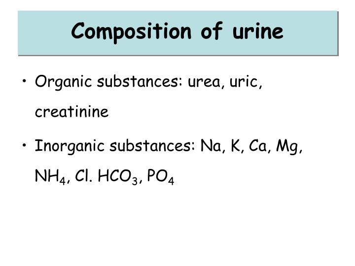 Composition of urine