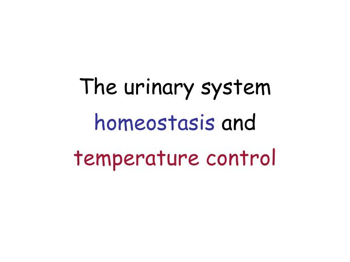 The urinary system homeostasis and temperature control