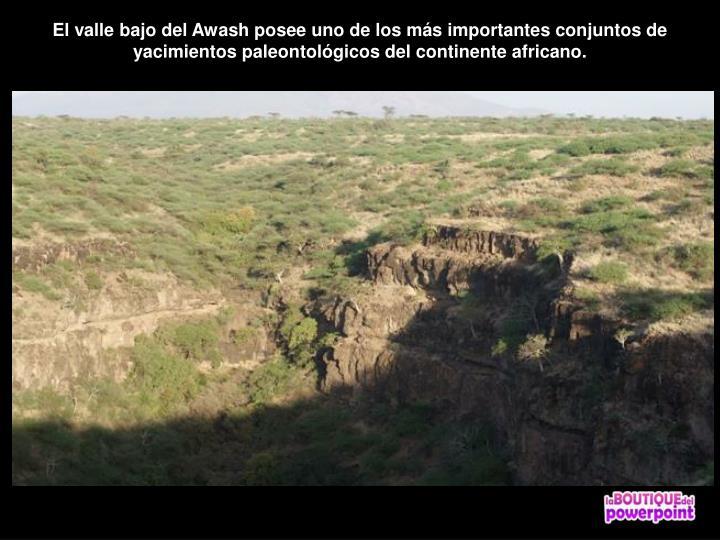 El valle bajo del Awash posee uno de los más importantes conjuntos de yacimientos paleontológicos del continente africano.