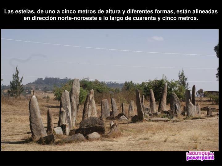 Las estelas, de uno a cinco metros de altura y diferentes formas, están alineadas en dirección norte-noroeste a lo largo de cuarenta y cinco metros.