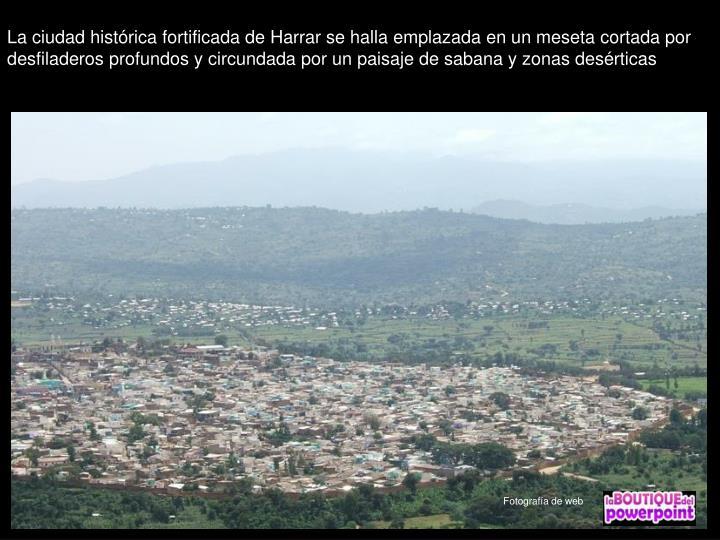 La ciudad histórica fortificada de Harrar se halla emplazada en un meseta cortada por desfiladeros profundos y circundada por un paisaje de sabana y zonas desérticas