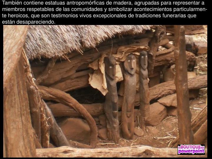 También contiene estatuas antropomórficas de madera, agrupadas para representar a miembros respetables de las comunidades y simbolizar acontecimientos particularmen-te heroicos, que son testimonios vivos excepcionales de tradiciones funerarias que están desapareciendo.