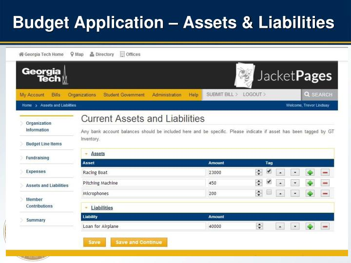 Budget Application – Assets & Liabilities