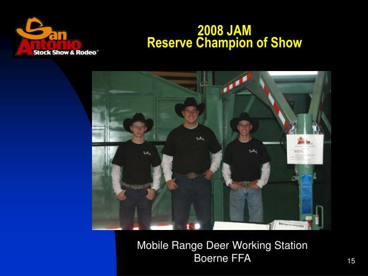 2008 JAM
