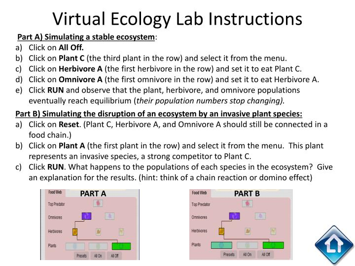 Virtual Ecology Lab Instructions
