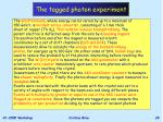 the tagged photon experiment