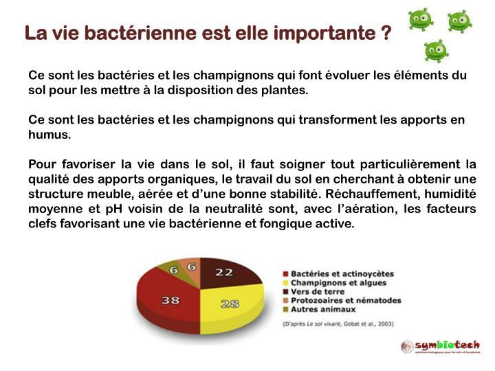 La vie bactérienne est elle importante ?
