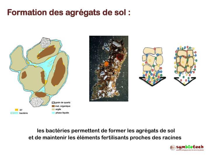 Formation des agrégats de sol :