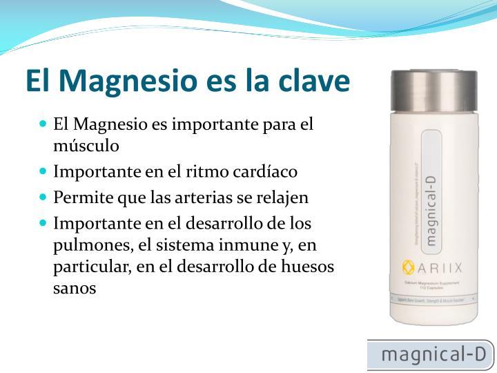 El Magnesio es la clave