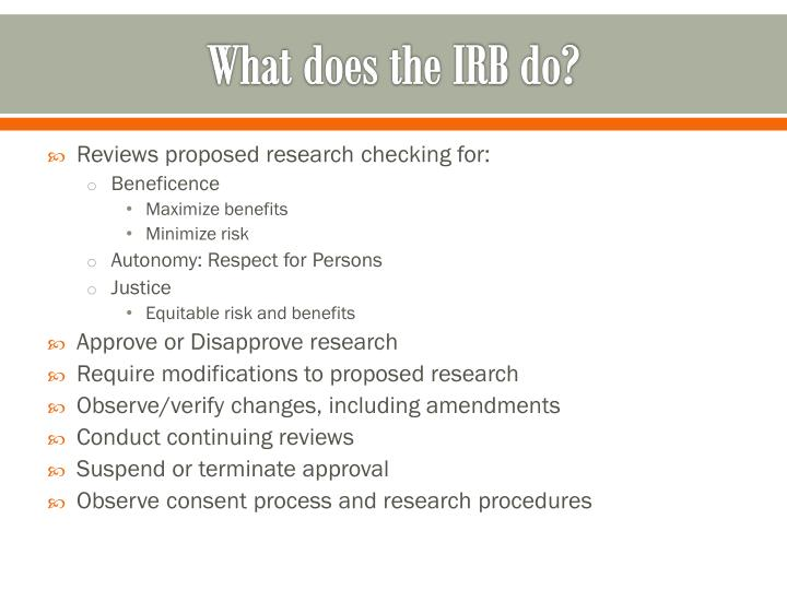 What does the IRB do?