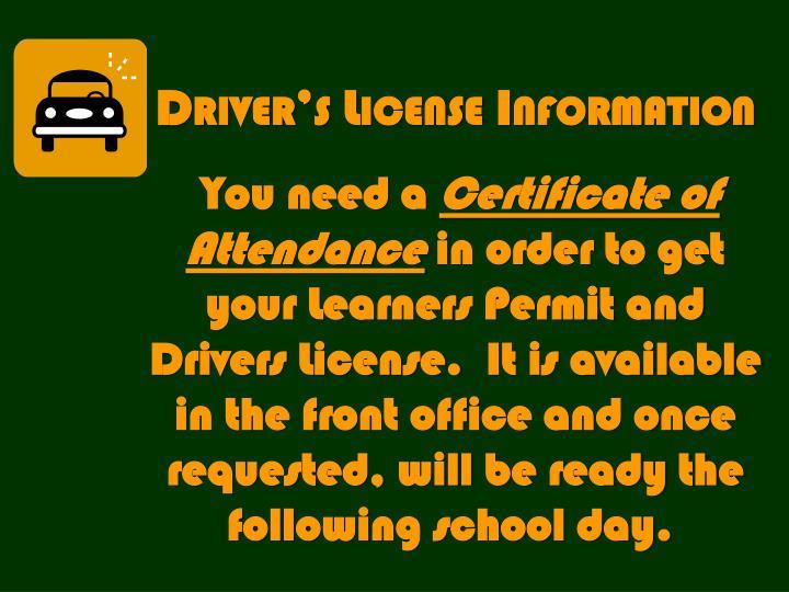 Driver's License Information