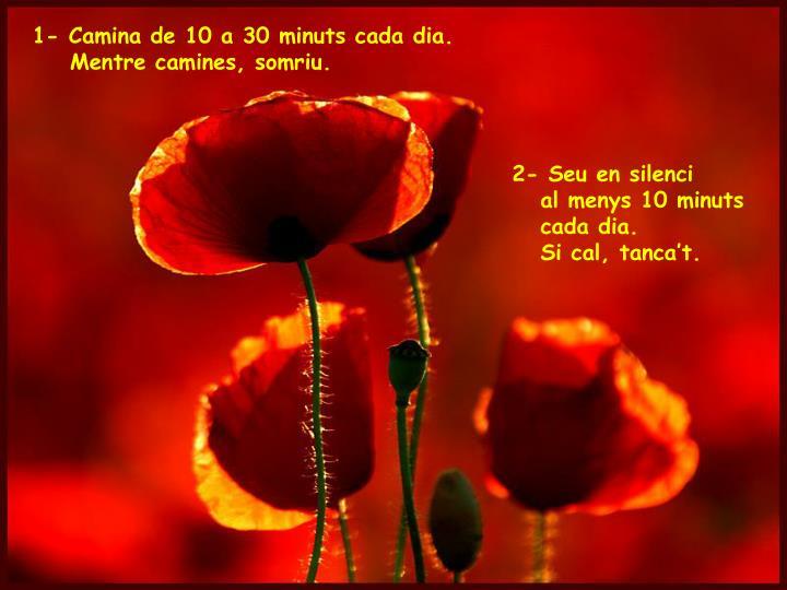 1- Camina de 10 a 30 minuts cada dia.