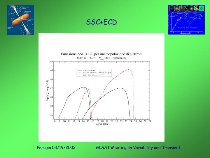 SSC+ECD