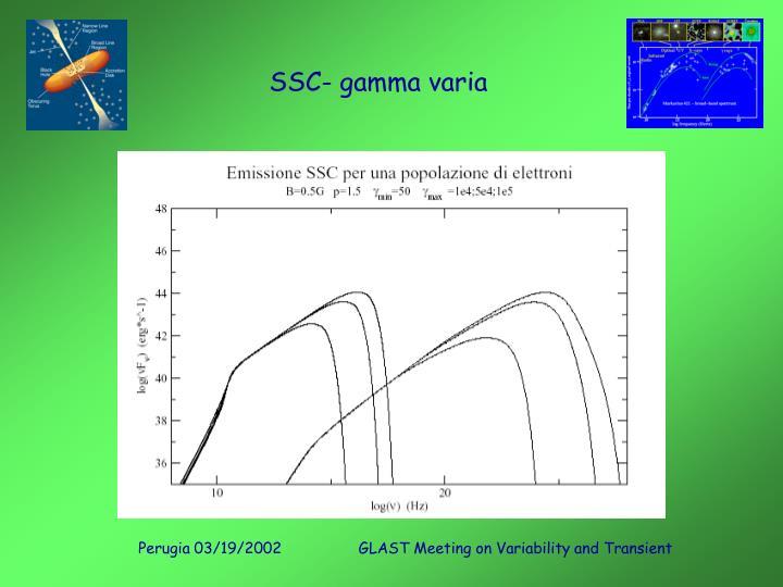 SSC- gamma varia