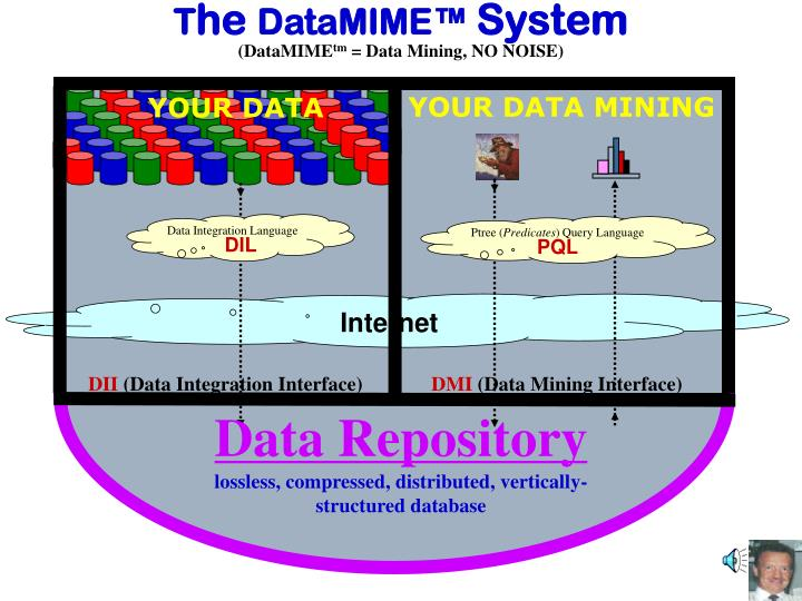 T he datamime system datamime tm data mining no noise