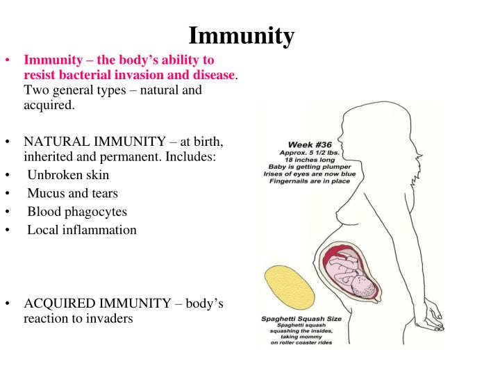Immunity – the body's ability to resist bacterial invasion and disease