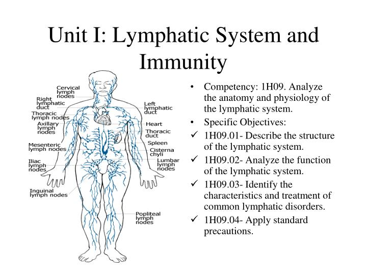 Unit i lymphatic system and immunity