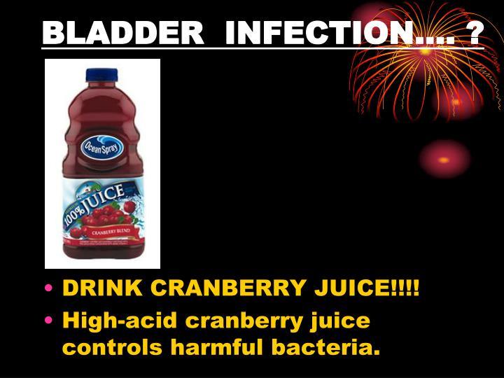 BLADDER INFECTION…. ?