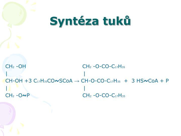 Syntéza tuků