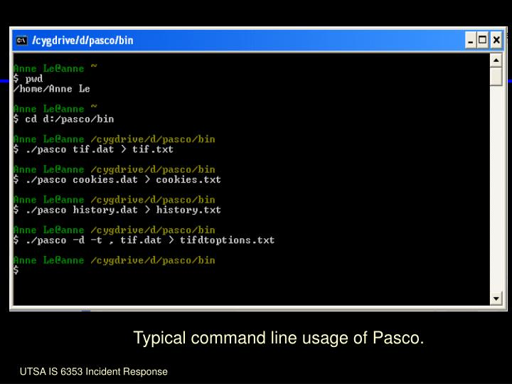 Typical command line usage of Pasco.